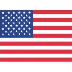 Bandera EEUU 3' x 5'