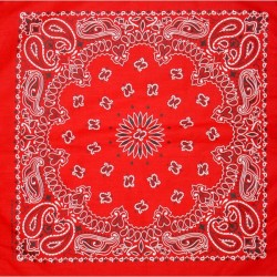 Bandanas Couleur (lot de 2)